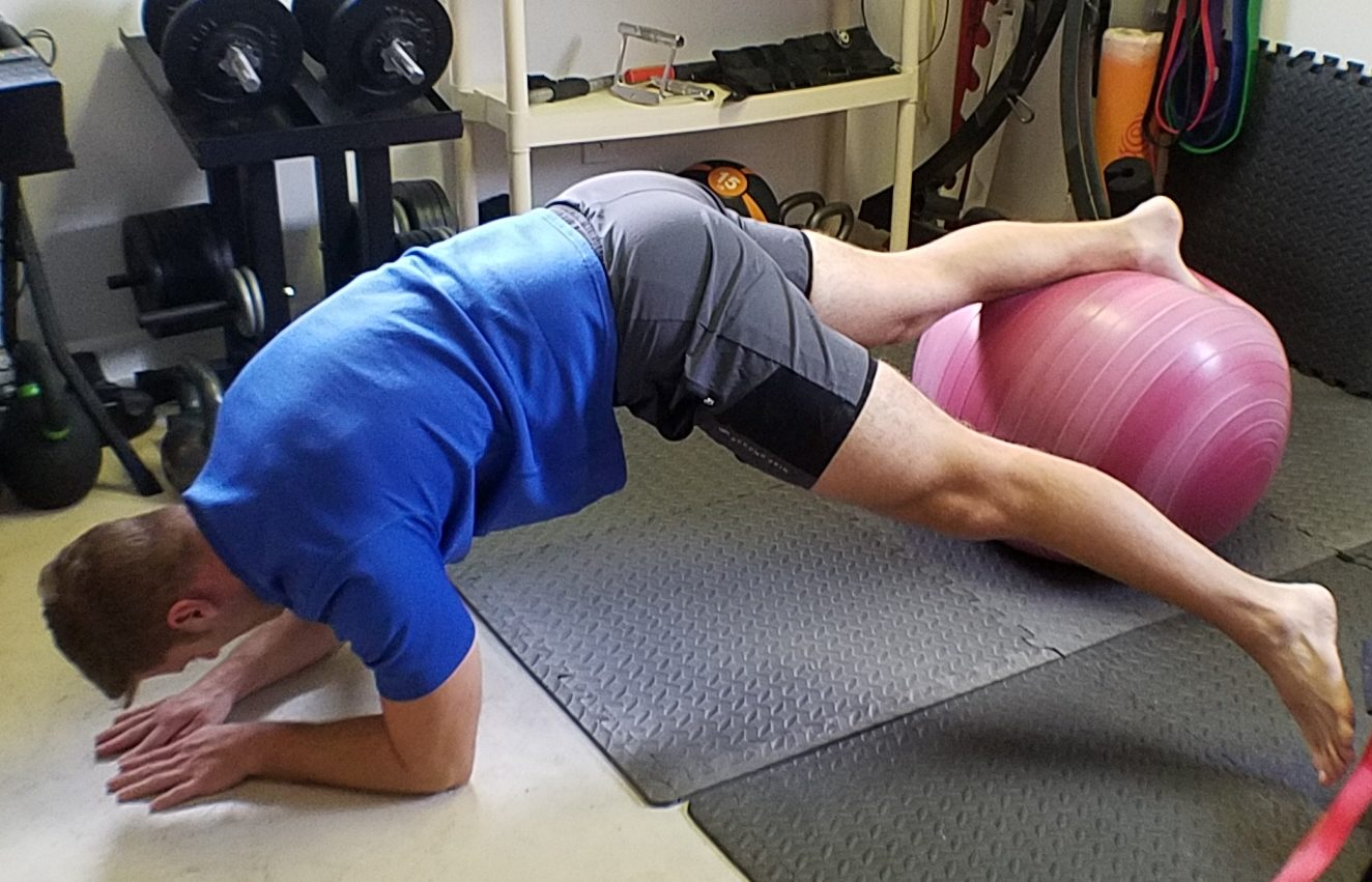 """<span class=""""entry-title-primary"""">SBall Plank with Toe Taps</span> <span class=""""entry-subtitle"""">Move It Monday</span>"""