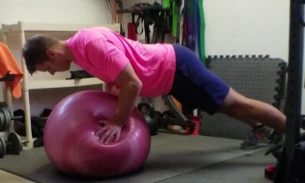 "<span class=""entry-title-primary"">Stability Ball Only Circuit</span> <span class=""entry-subtitle"">Work It Wednesday</span>"