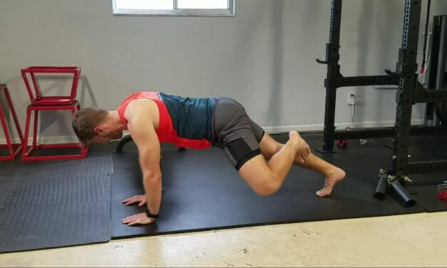 Plank Hip External Rotation – Core/Hip Cohesive Stability